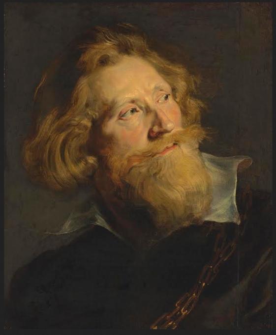 Sir Peter Paul Rubens – Portrait of a Bearded Man